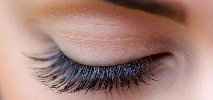 Ламинирование ресниц, окрашивание и Lash Botox от «Golden Beauty Studio»